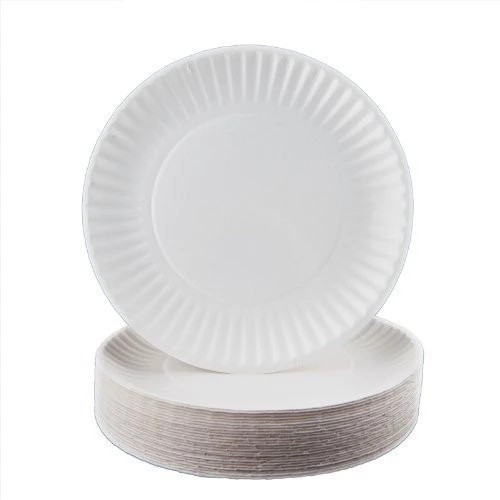 Paper plate 2